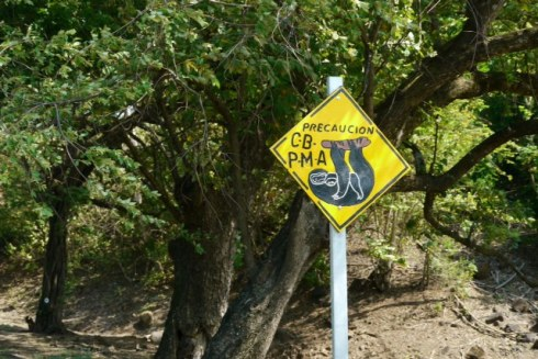Sloth sign