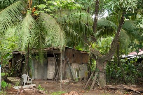 Puerto Jiménez house? cabin?