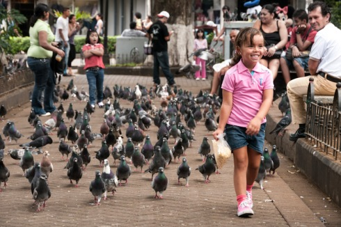 Proud little girl leading hundreds of pigeons