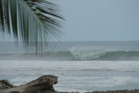 Playa Dominical, wave