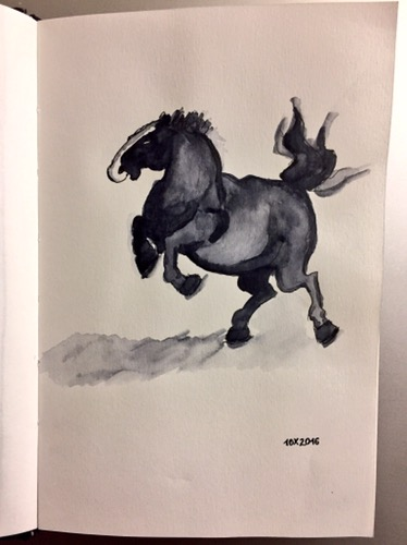 Black ink and grey watercolour showing a horse jumping