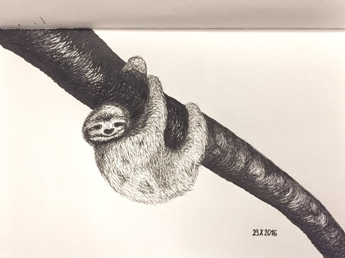 A sloth hanging from a branch.