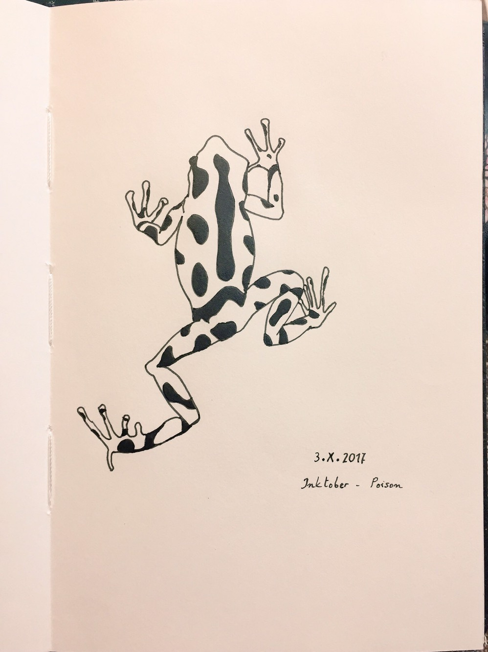 Poisonous frog viewed from above, in black and white, with black spots