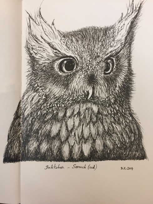 Ink drawing of a screeching barn owl
