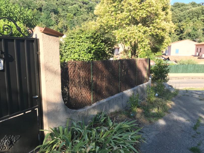 Le long de la clôture, à l'extérieur j'ai planté trois lauriers aux fleurs saumon pâle.
