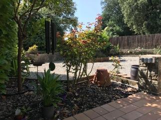 La plate-bande du bout de la terrasse. Une sorte d'arum, rosiers, carillon accroché au citronnier. J'ai déplacé le plumeria pour qu'il soit arrosé automatiquement.