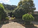 Le fond du jardin où j'ai mis une chaise longue. Il reste un troène (en fleurs). Au devant, lîlot pittosporum et la bordure en bambou protégeant les coréopsis et lavandes.