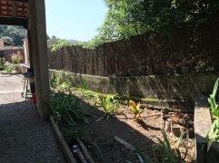 Le jardin de côté. Au premier plan, deux branches de yucca qui repartent, un bananier, des iris. Les deux troènes de part et d'autre du portail ont été abattus, dégageant bien la vue.